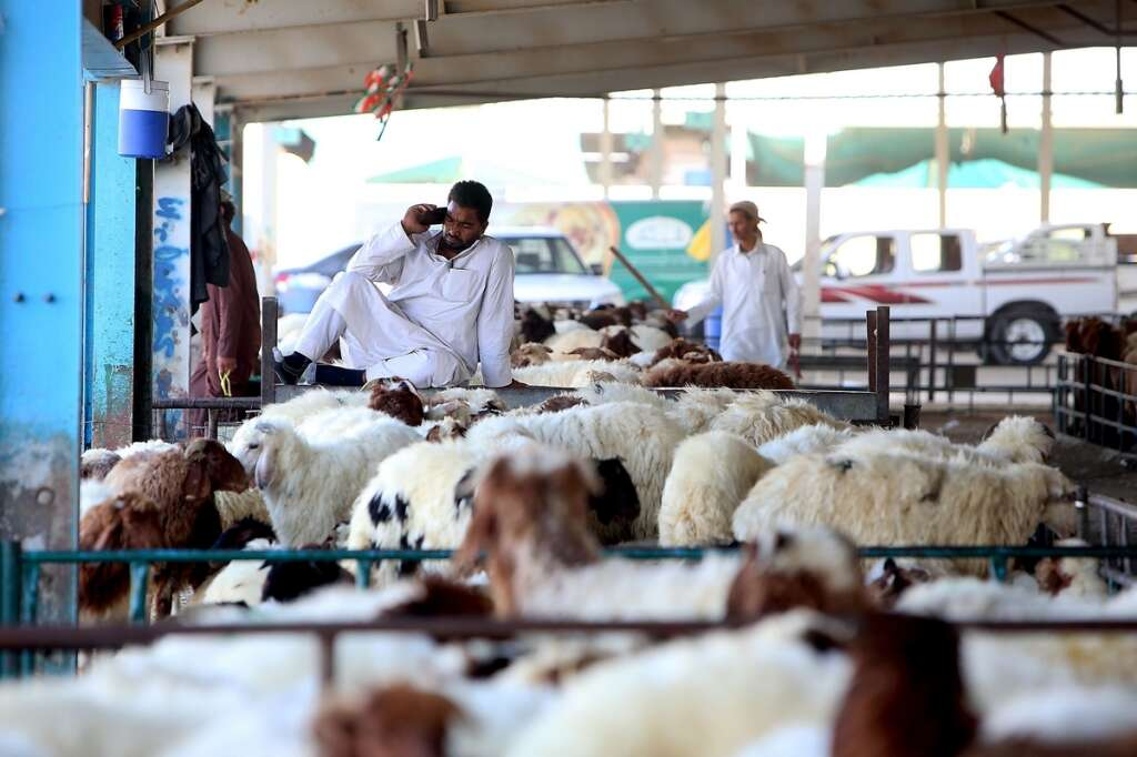 Eid Al Adha: Avail of all-in-one slaughtering, meat delivery