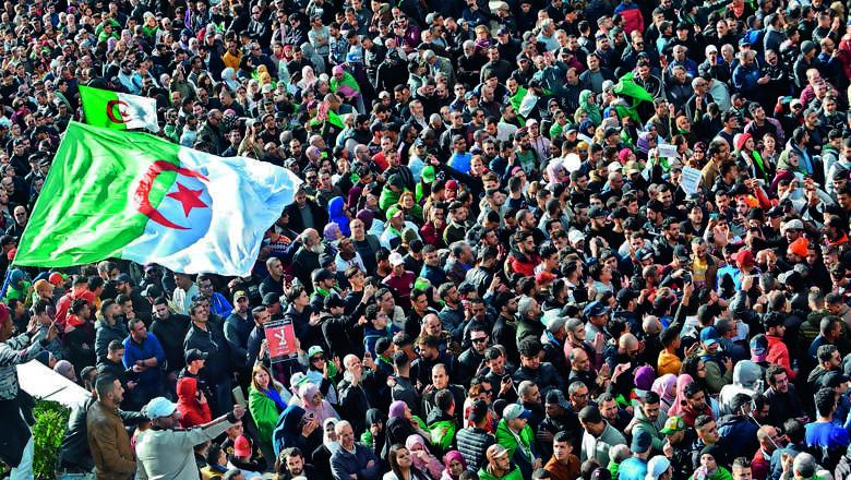 protest, algeria, election