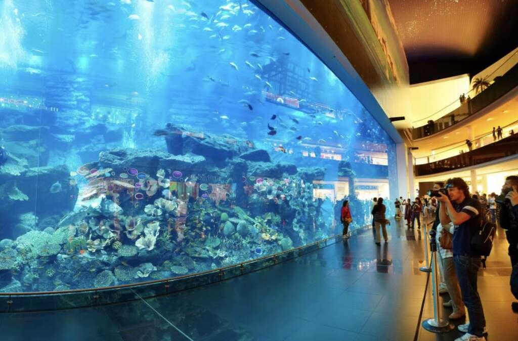 Dubai tour, operators, optimistic, inbound market, picks up