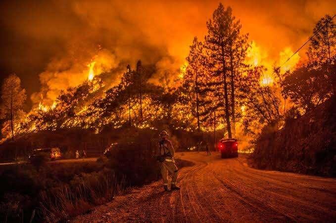 wildfires, flee, united states, oregon, washington