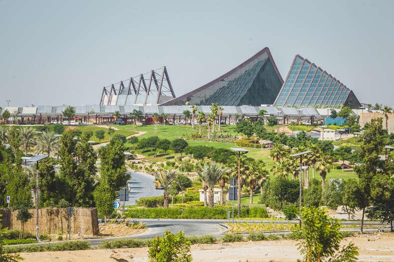 Dubai Safari Countdown Begins News Khaleej Times