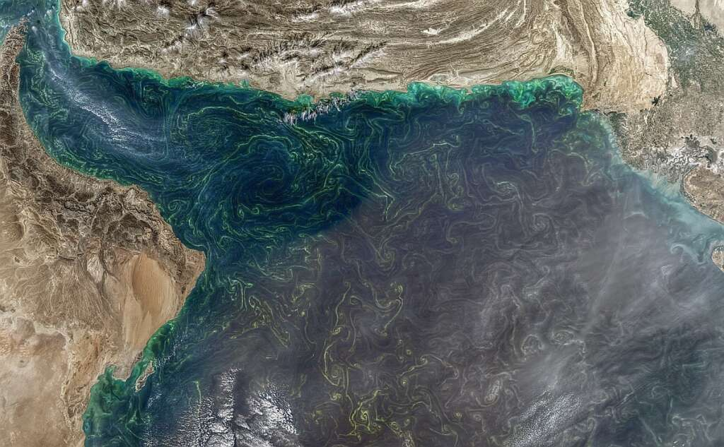 Fishing and swimming warning issued amid red tide presence in UAE, regional waters
