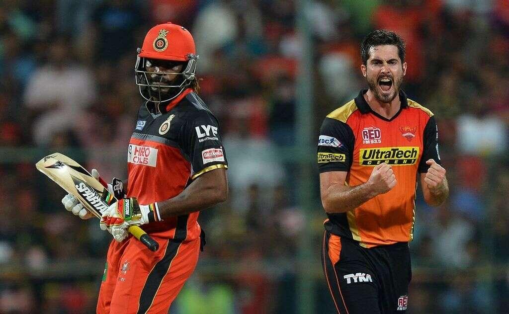 Sunrisers Hyderabad beat RCB to become IPL 2016 champions
