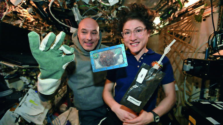 astronaut, cookies, earth, space, nasa