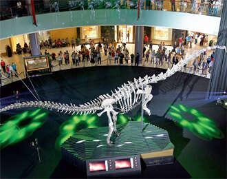 155 million-year-old dinosaur at Dubai Mall