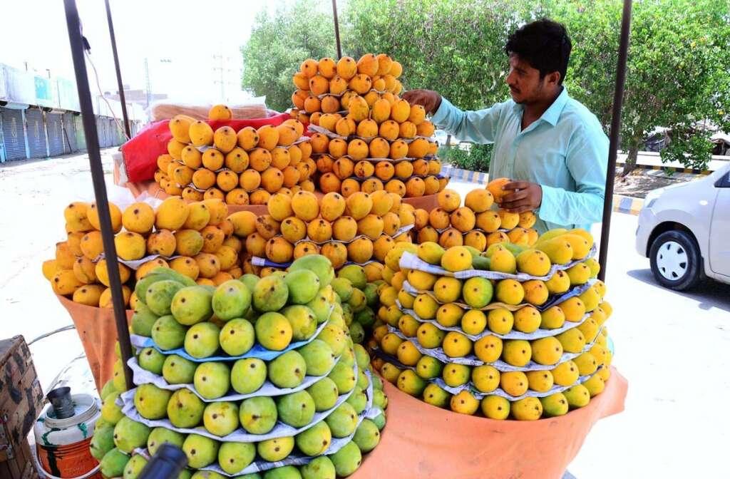 Mango, weather, slowdown