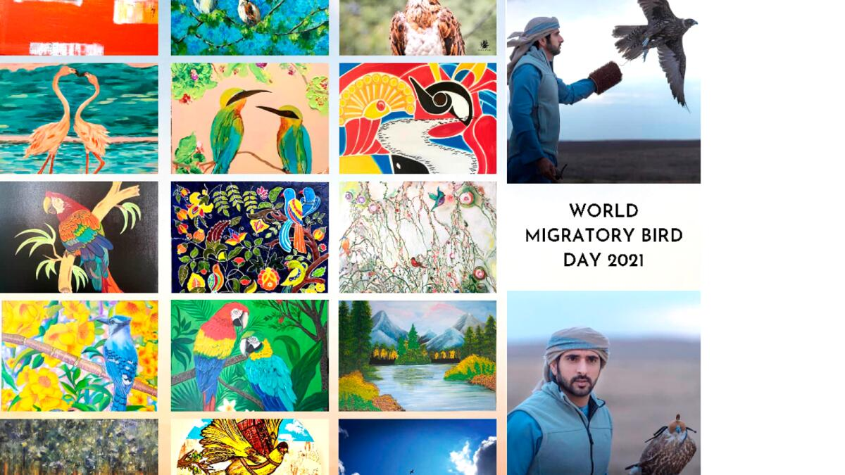 World Migratory Bird Day 2021 exhibition at Dubai Creek Park