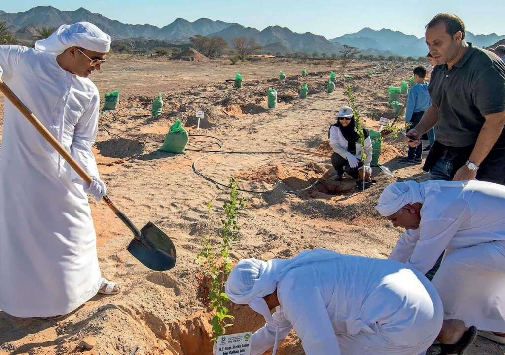 Government officials, companies, schools and families take part in the annual 'For Our Emirates We Plant' event.