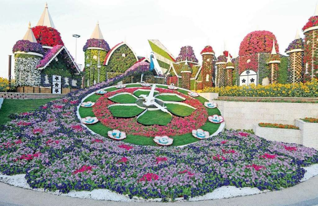 50 million blooms to wow visitors at dubai miracle garden khaleej times - Dubai Miracle Garden