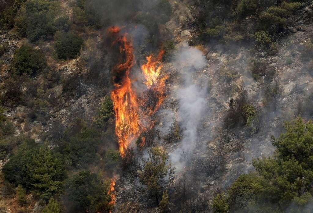 Lebanon forest fire, Saad hariri