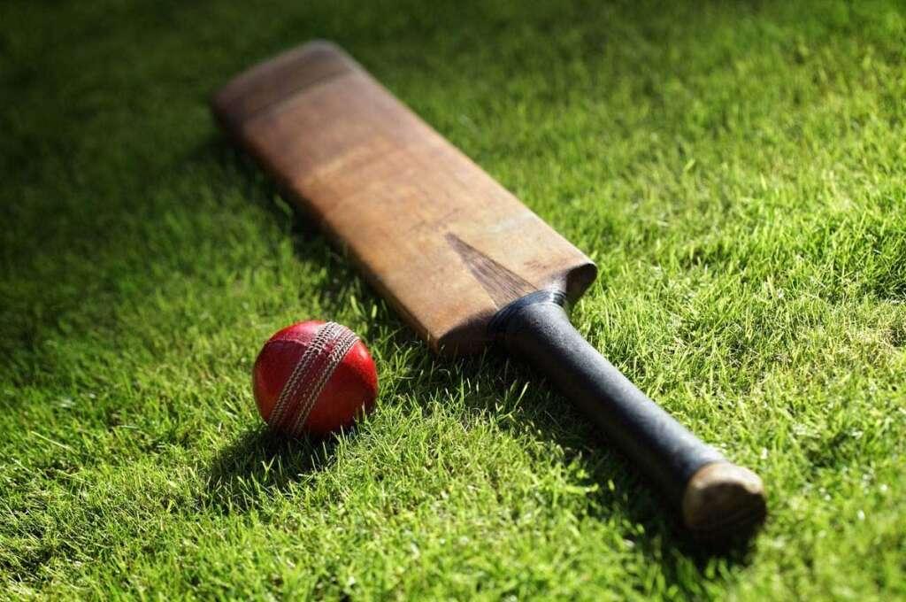 69% of UAE nationals love cricket: Survey