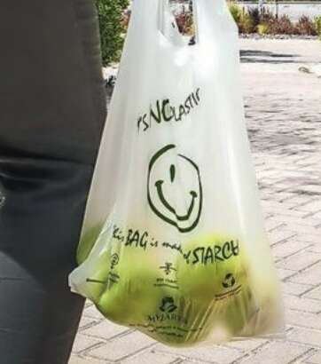 eco-friendly alternative, plastic,  single-use plastic
