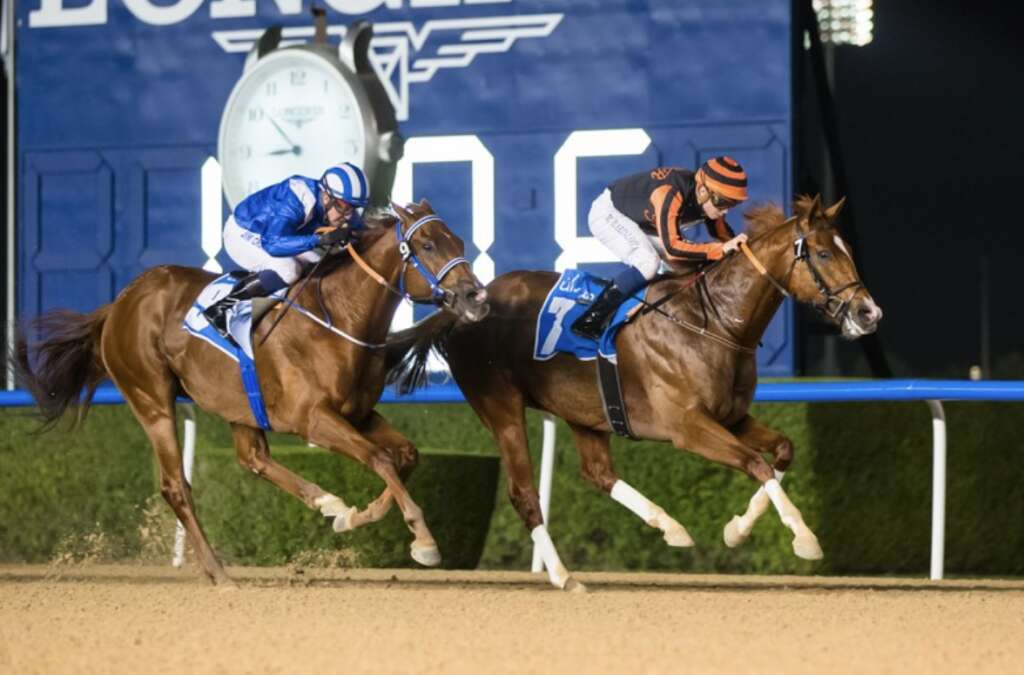 Gladiator King sprints to glory at Meydan