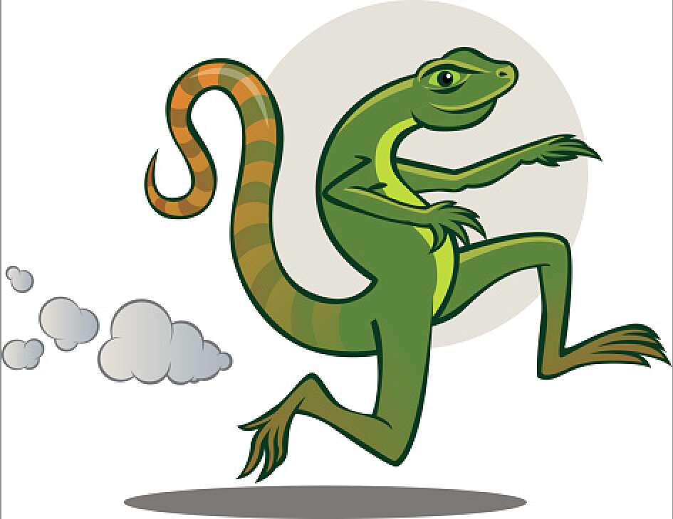 An Antilog Lizard