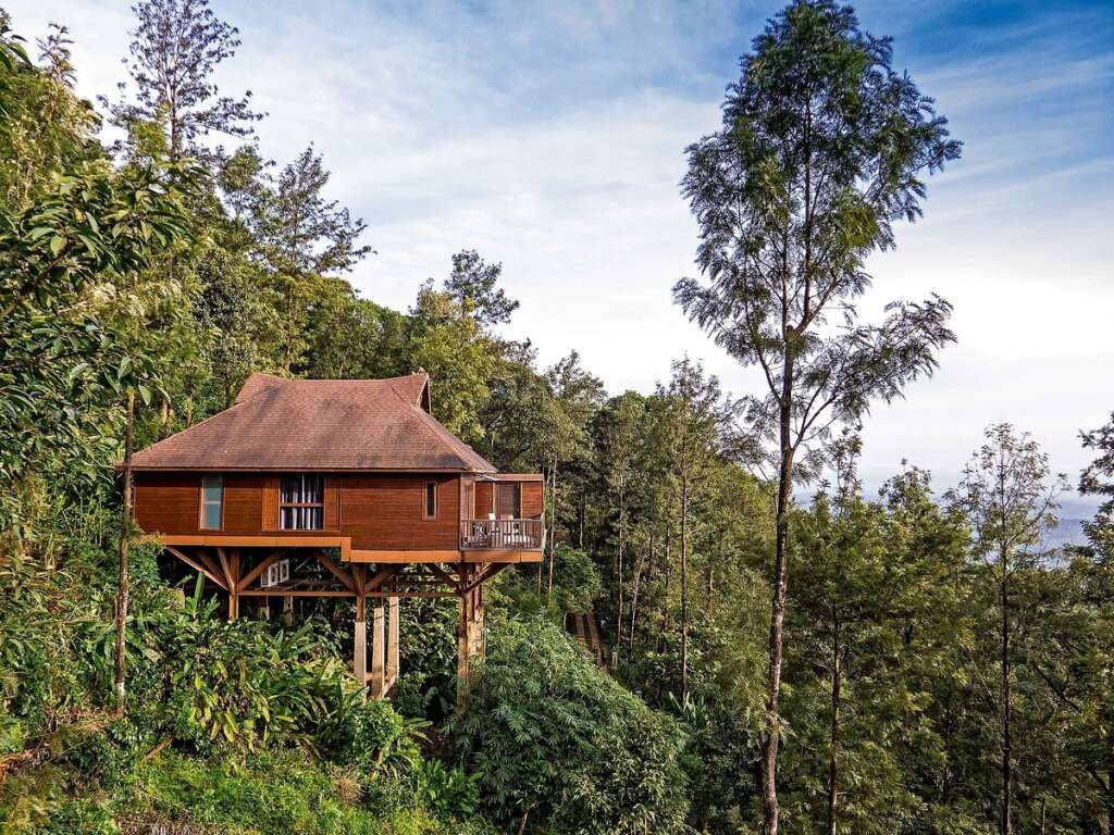 Immerse yourself in the greenery of Coorg