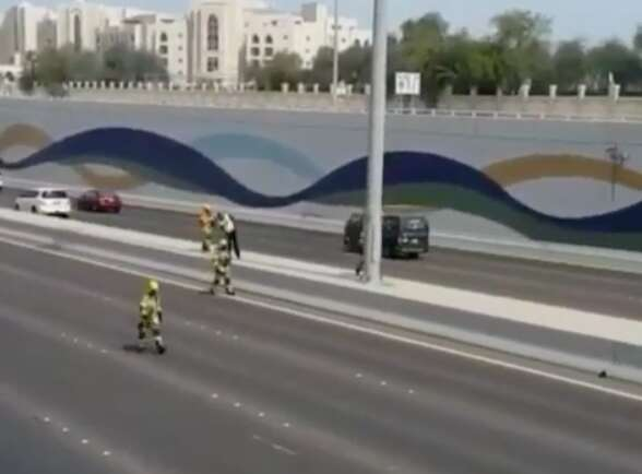 UAE traffic comes to a standstill to save cat