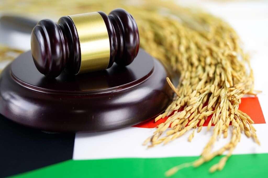 Kuwait, first, female, judges