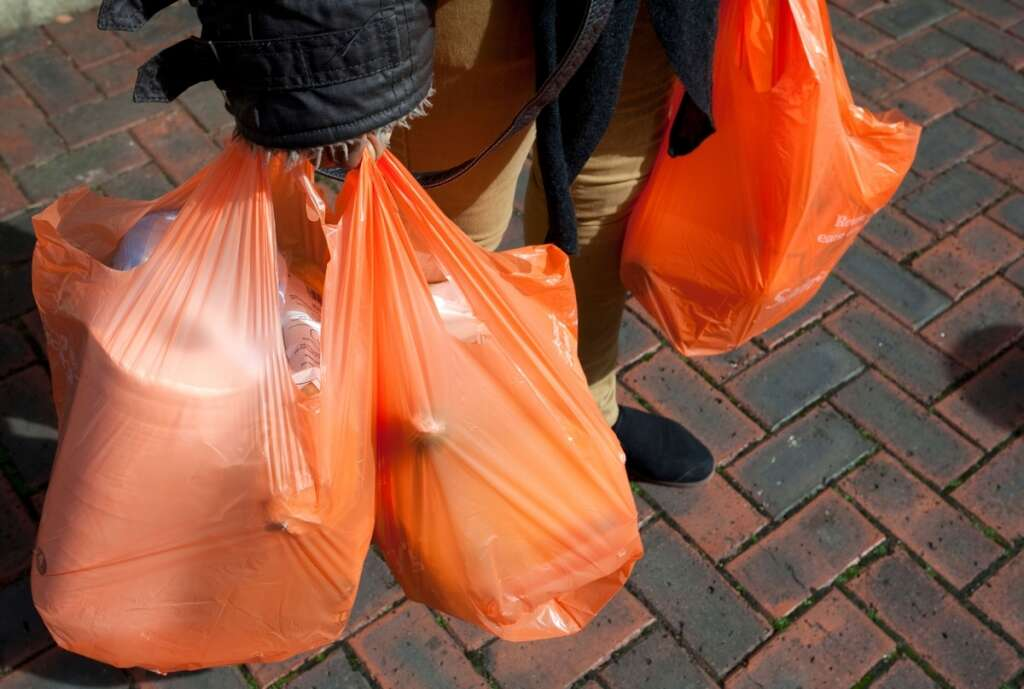 UAE, Ras Al Khaimah, RAK, environment, plastic, plastic bag, ban, Dr Saif Al Ghais, Environment Protection and Development Authority