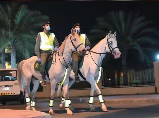crime, police, Dubai, UAE, Mounted Police, horses, car theft