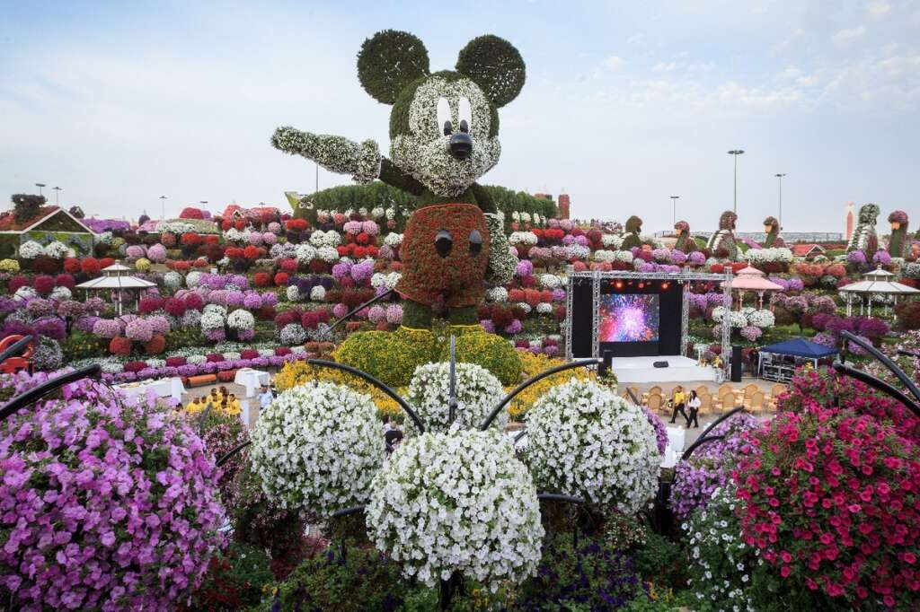 photos by neeraj muralikhaleej times - Miracle Garden Dubai
