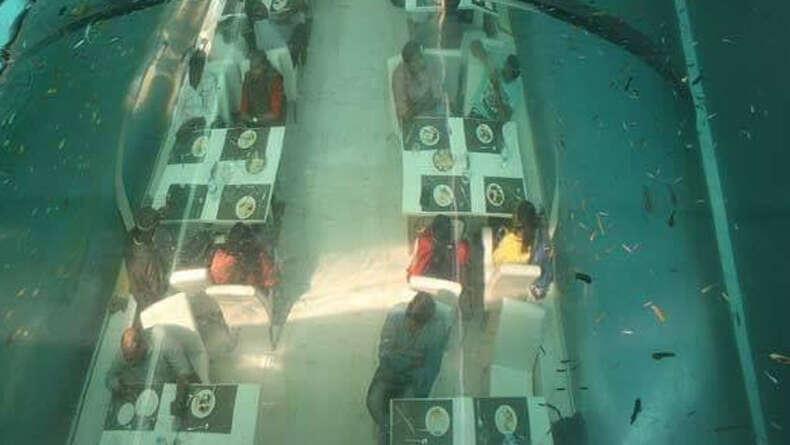 Indias first underwater restaurant opens