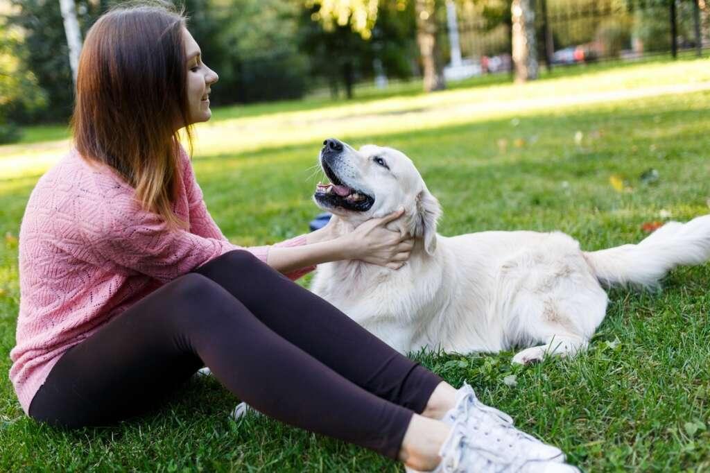 international dog day, celebrities, dog lovers, videos, photos, social media