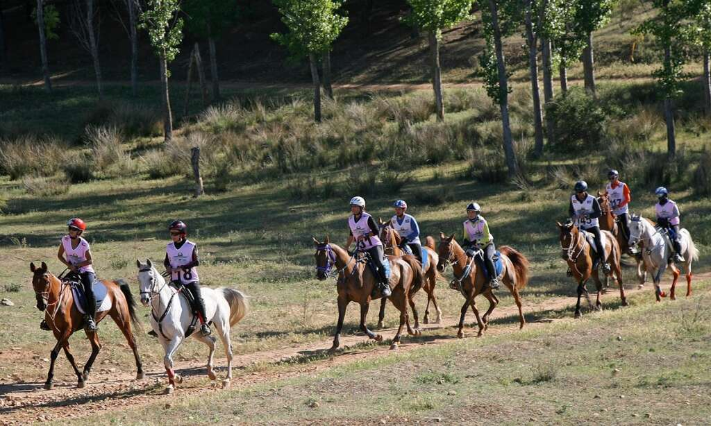 Five UAE lady riders in fray