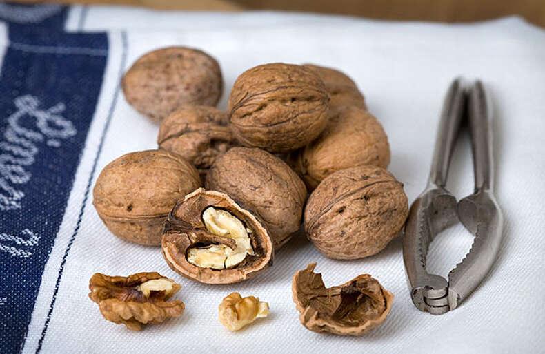 Top 5 reasons to eat walnuts - News | Khaleej Times