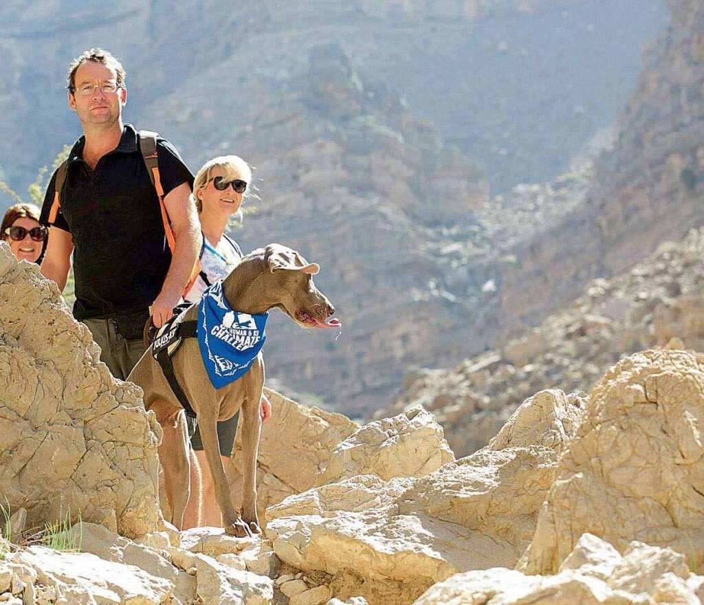 Set off on a poochy adventure in RAK