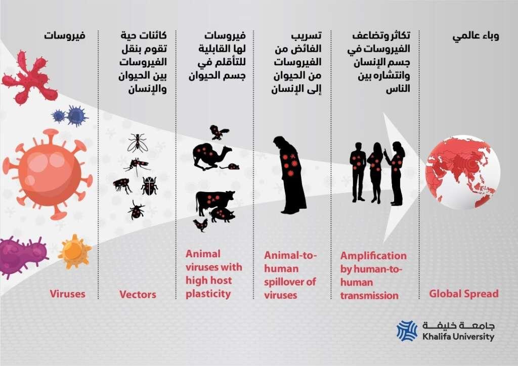 Abu Dhabi university leading study into coronavirus' jump from animals to humans – News