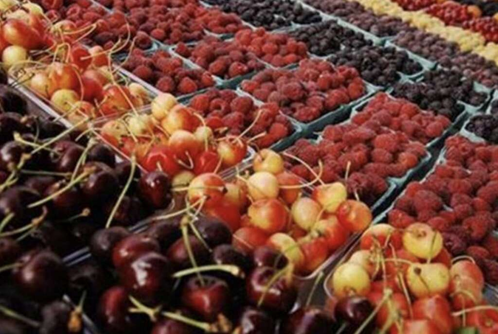 Saudi Arabia bans fruits, vegetables from Indian state - Khaleej Times