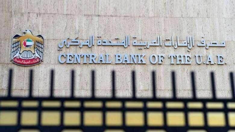 Regulatory, stimulus measures to help UAE banks repel virus