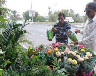 About Sharjah: Saying it with plants, flowers - News