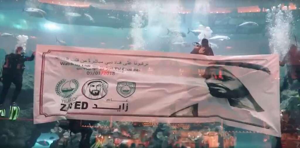 Video: Police officers swim in Dubai Mall aquarium