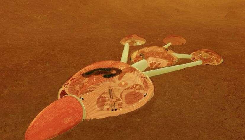 Emiratis want their grandchildren to live on Mars