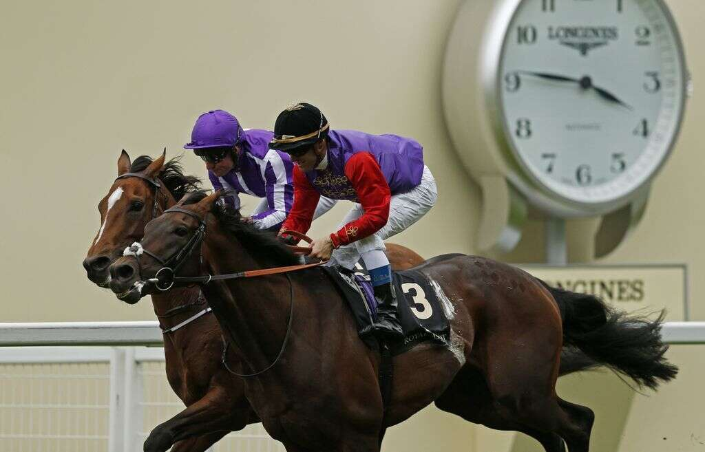 Horse racing: Dartmouth presents Queen with a belated birthday gift
