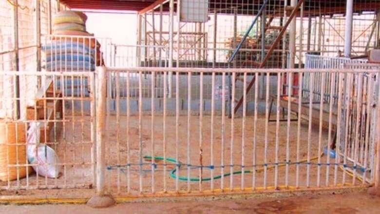 barn, illegal, sharjah, crackdown, municipality