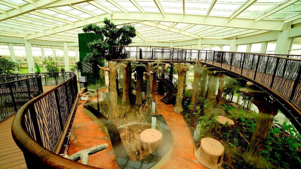 Free entry to Dubai's Quranic Park for select visitors