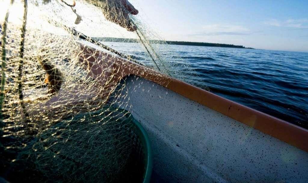 UAE, Iran, coast guards, Emirati, Asian fishermen, international agreements,