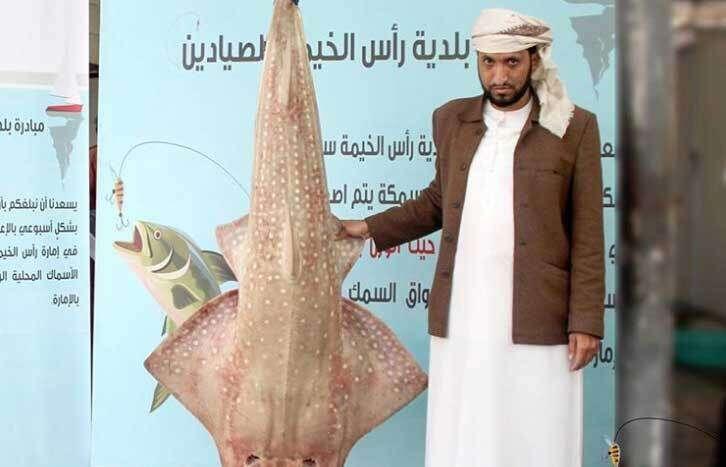 Emirati fisherman, biggest fish, Massive, fish, weighing, 56kg, caught, UAE,