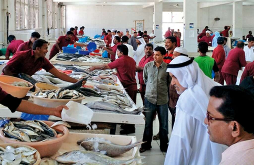 Heading to the RAK fish market? Check prices online first