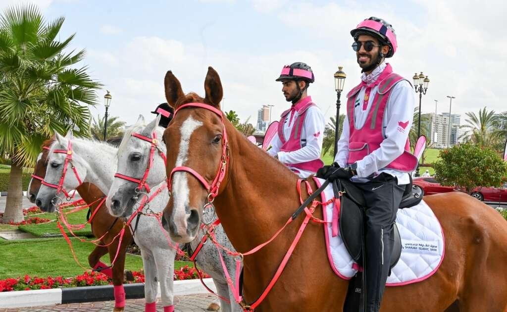 UAE-wide journey, UAE, Pink Caravan Ride, Details, free, cancer screenings,  revealed