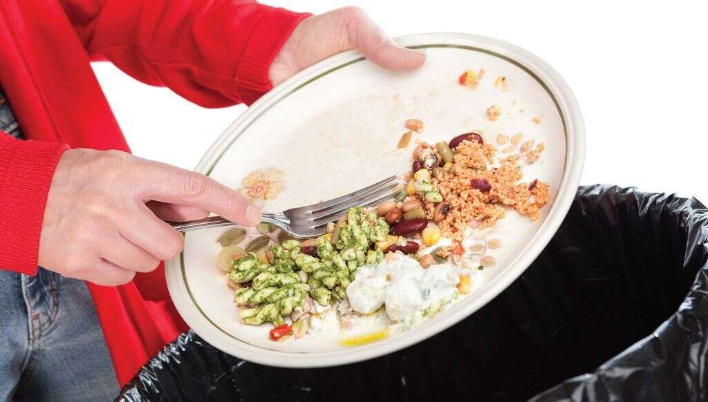 3 million tonnes of food is wasted annually in the UAE