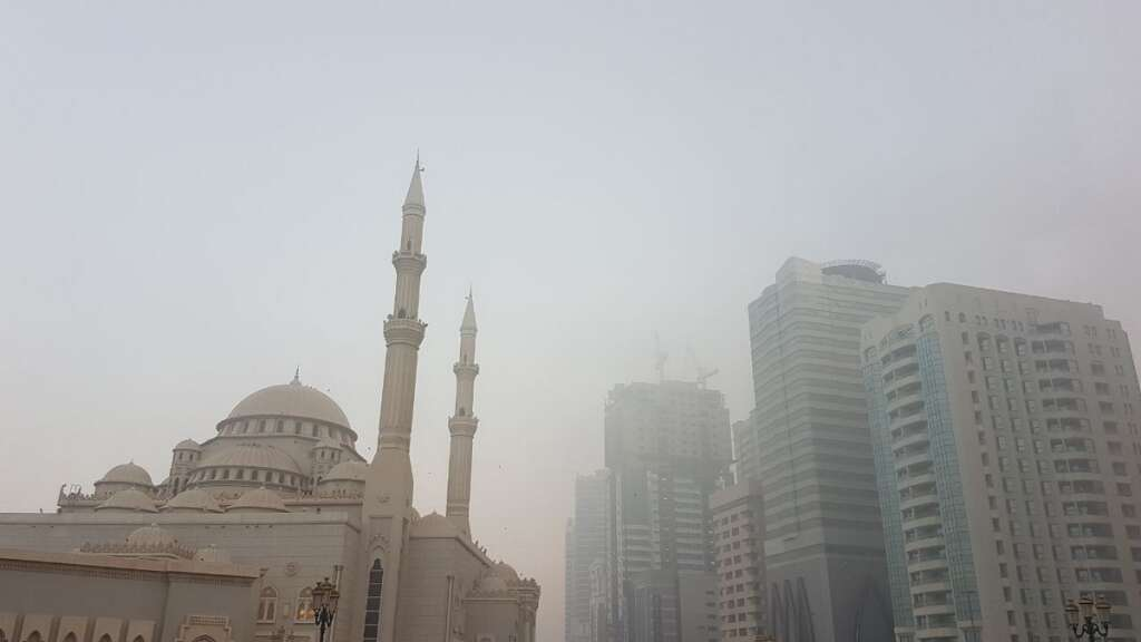 Video: Dense fog takes over UAE, motorists watch out