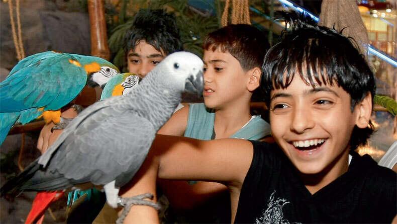 Dubai kids in for a treat at new petting farm - Khaleej Times