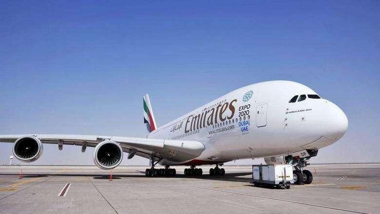Snake on Dubai-bound Emirates flight grounds plane
