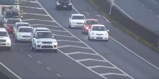 Video: Traffic comes to a grinding halt as ducks cross busy highway