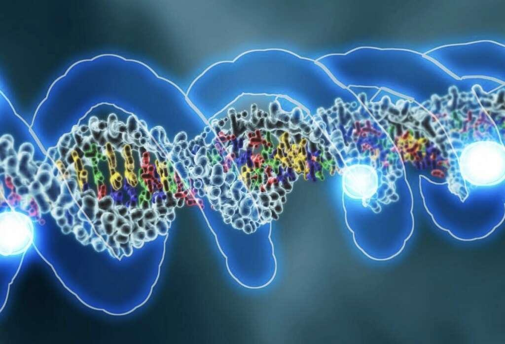 Combating coronavirus, covid19, UAE genomic study, identifies, 70 mutations, Covid-19 virus