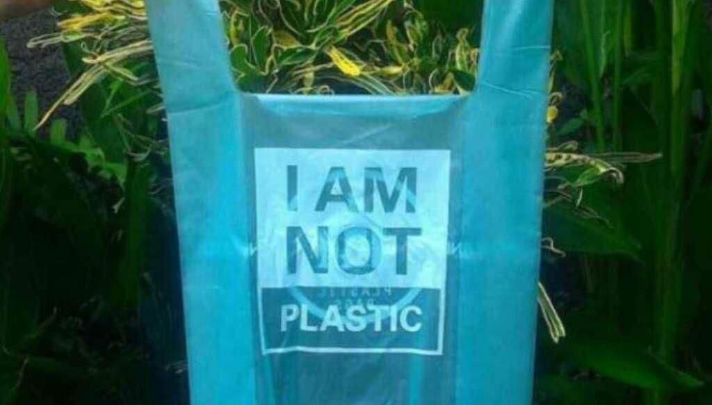 mango kernel, Pakistani scientis, plastic, bio plastic