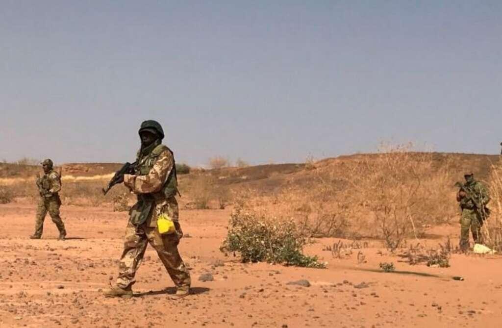 Niger, United Arab Emirates, Niger UAE